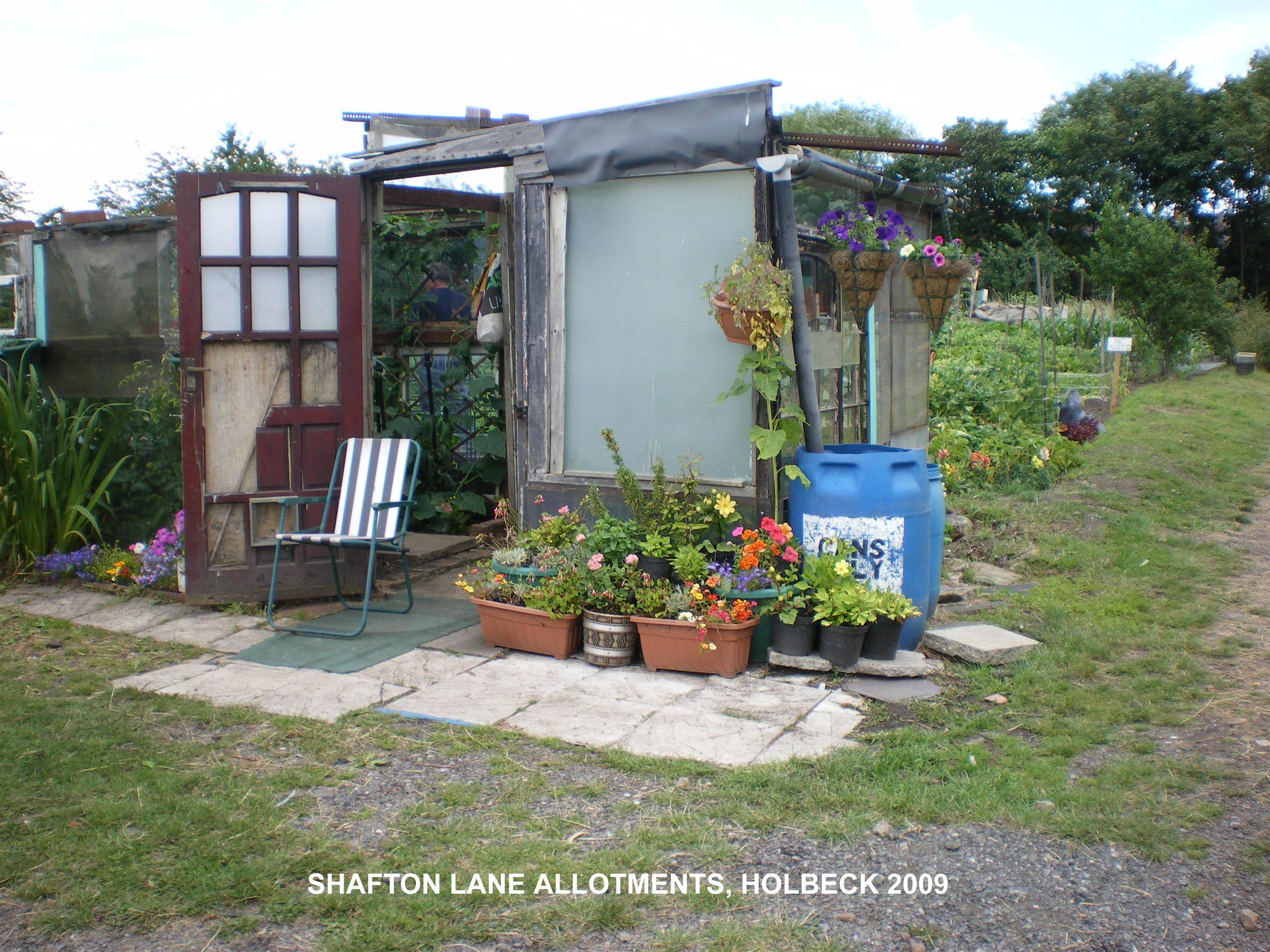 SHAFTON-LN2009